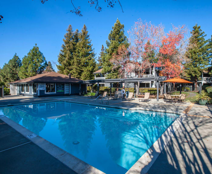 The pretty pool at Avery Park Apartments in Fairfield, California