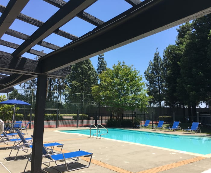 The pretty pool at Avery Park Apartments in Fairfield, California with lounge chairs