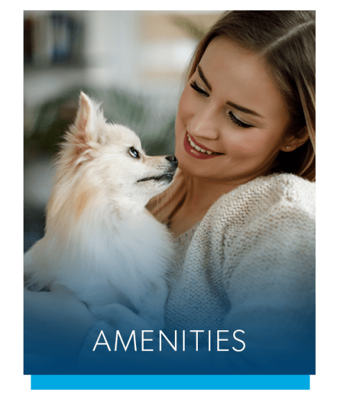 View the amenities at Perry's Crossing Apartments in Perrysburg, Ohio