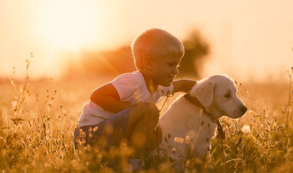 Boy playing with his dog at Timnath Trail at Riverbend Apartment Homes in Timnath, Colorado
