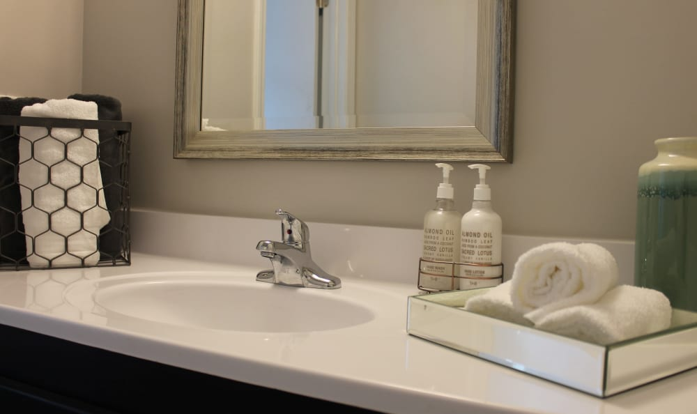 Fine fixtures and more in bathroom of apartment home at Palmilla Apartments