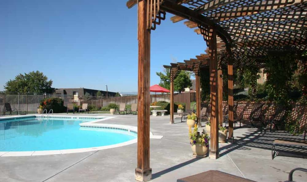 Arbor Covered Sun Chairs at Montair Apartment Homes in Thornton, Colorado