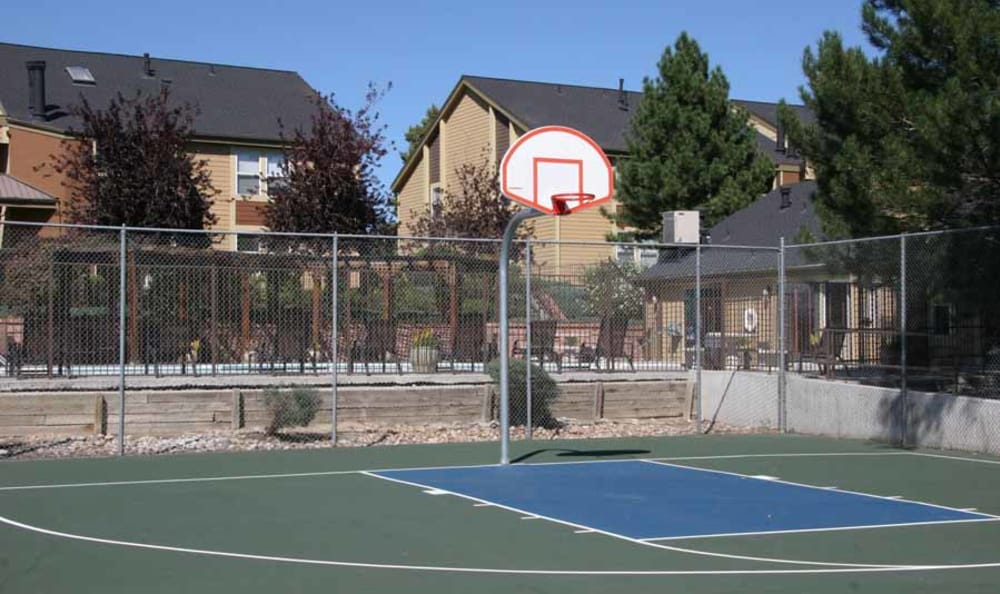 Basketball Court at Montair Apartment Homes in Thornton, Colorado