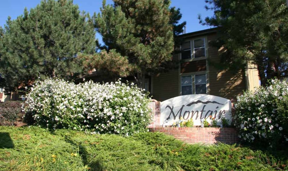 Landscaped Signage at Montair Apartment Homes in Thornton, CO