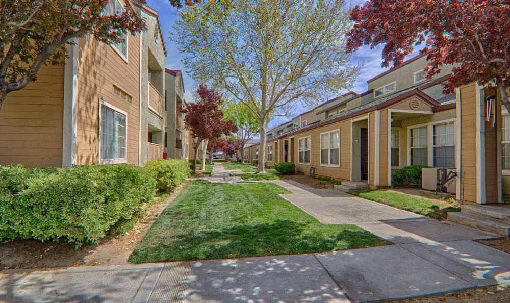 Courtyard and well-maintained greenery at Cordova Park Apartment Homes in Lancaster, CA
