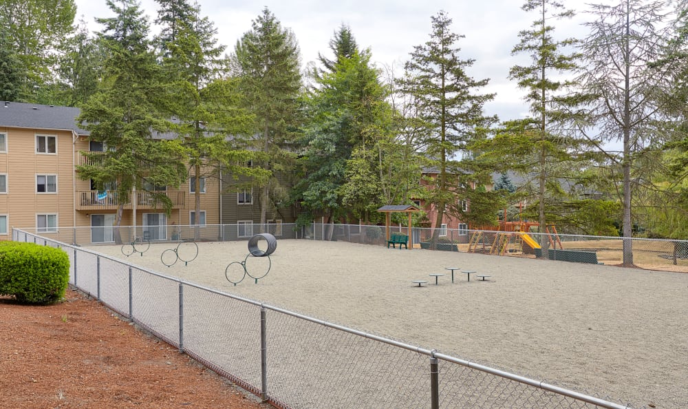 On-site dog park with agility training stations at The Boulevard at South Station Apartment Homes in Tukwila