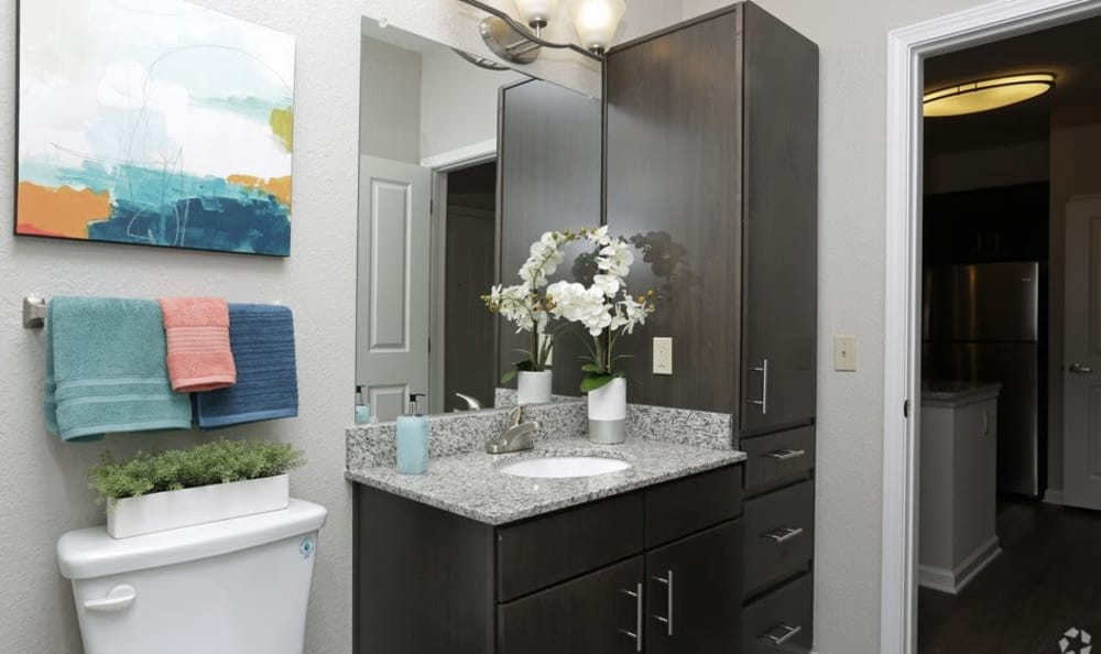Example bathroom at apartments in Ocoee