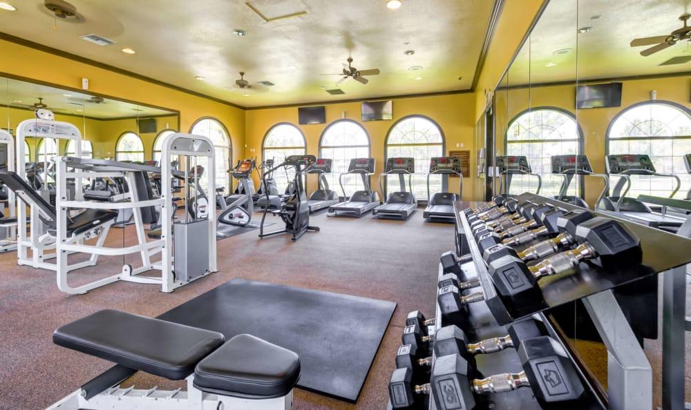 Alvista Towngate Exercise Room