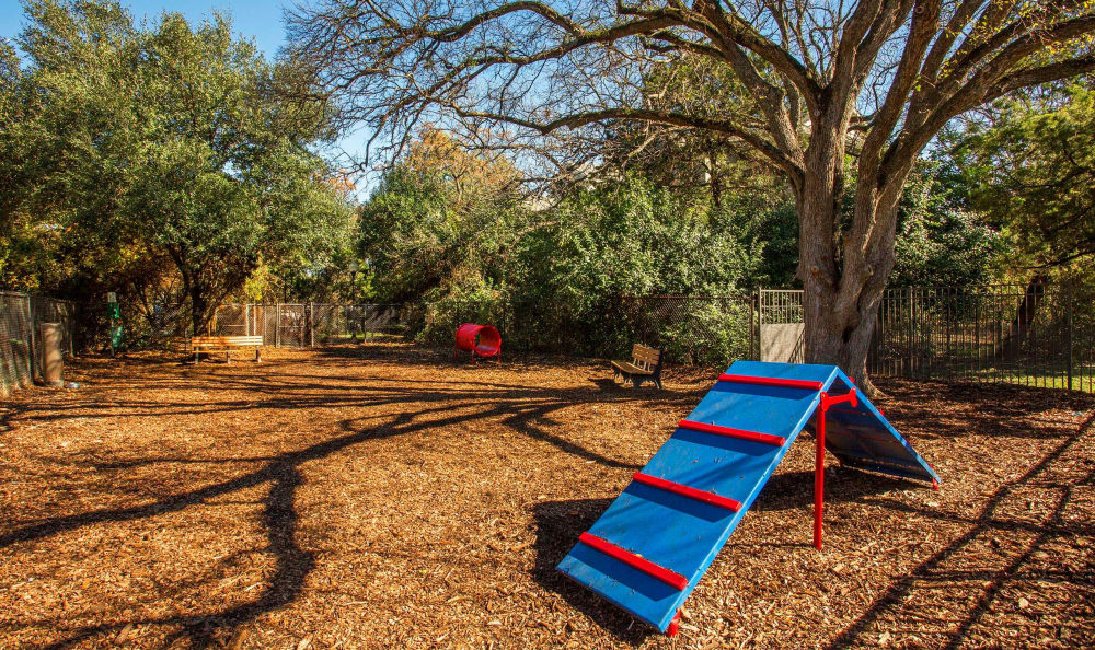 Onsite dog park with agility course at Riata in Austin, TX