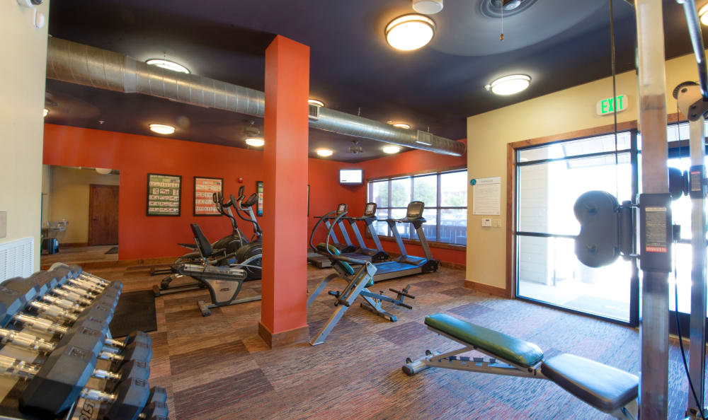 Fitness center at The Atlantic McKinney Ranch in McKinney, Texas