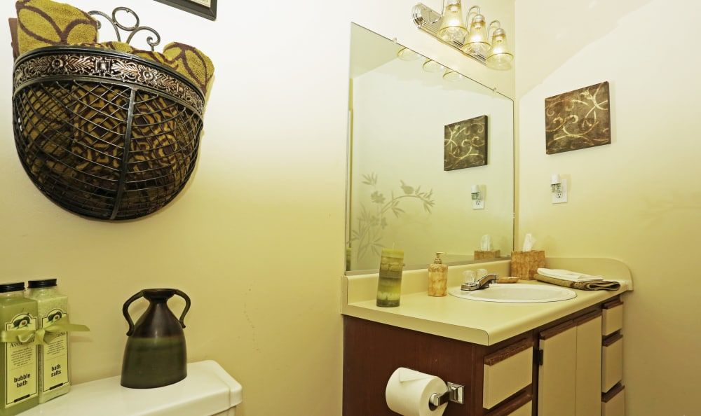 Well-lit guest bathroom with large vanity mirror in model home at Woodbriar Apartments in Chesapeake, Virginia