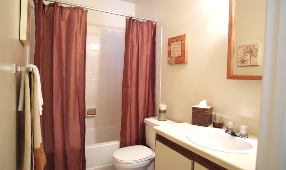 Spacious master bathroom in model home at Woodbriar Apartments in Chesapeake, Virginia