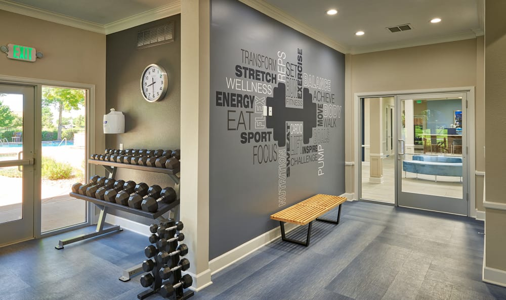 Fitness center, free wights, weight wall mural