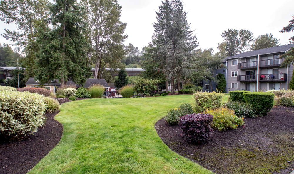 View of an open grassy area at The Boulevard at South Station Apartment Homes in Tukwila, Washington
