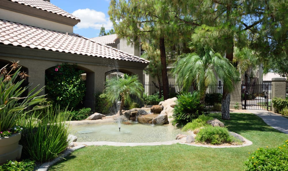 Water feature and green flora at Lumiere Chandler in Chandler, Arizona