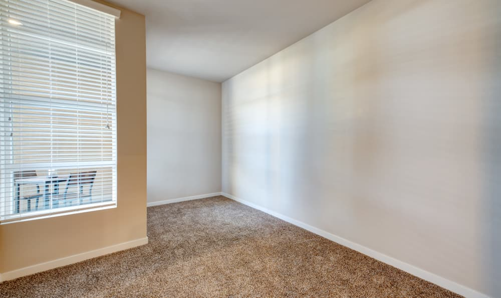 Plush carpet and accent wall in model home living area at IMT Sherman Circle in Van Nuys, California