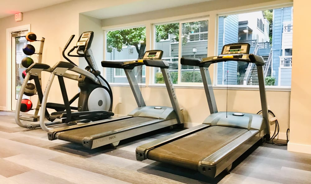 Newly renovated fully equipped fitness center