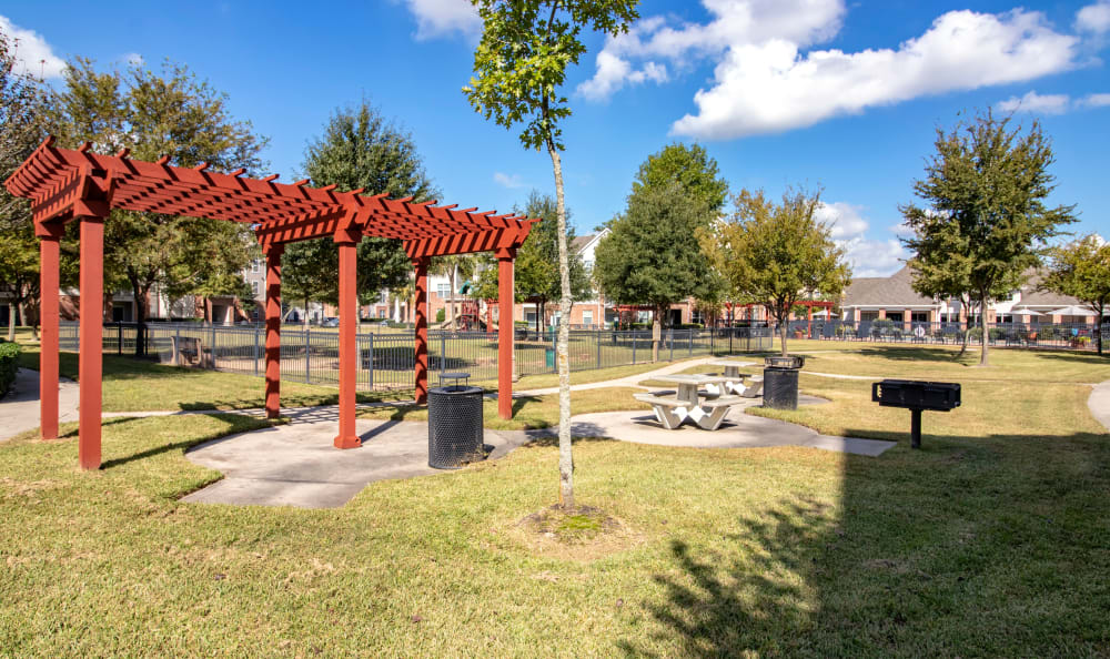 Outdoor picnic area at IMT Kingwood in Kingwood, Texas