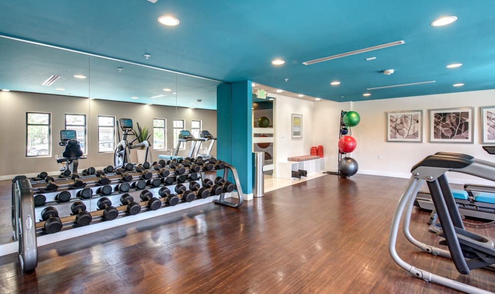 Free weights and more in the well-equipped fitness center at IMT Park Encino in Encino, California