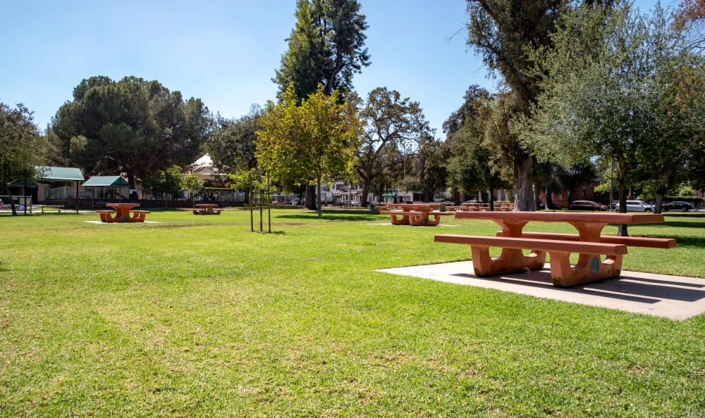 Well-maintained lawn surrounding one of the picnic areas at IMT Park Encino in Encino, California