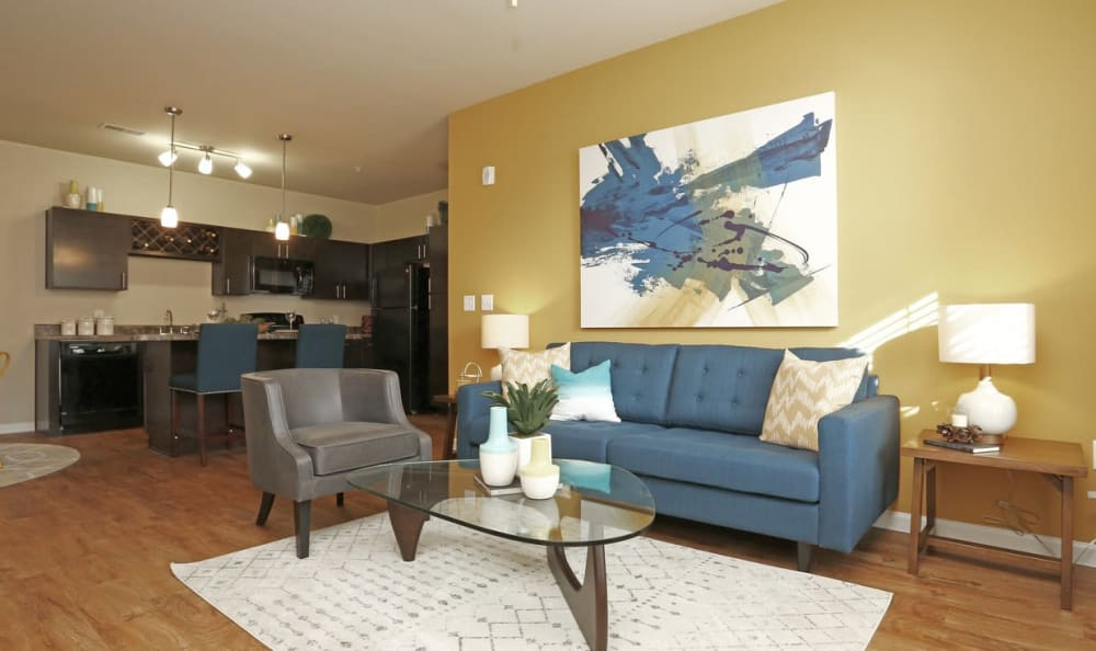 Open Concept Apartments at Springs at South Broadway in Rochester, MN