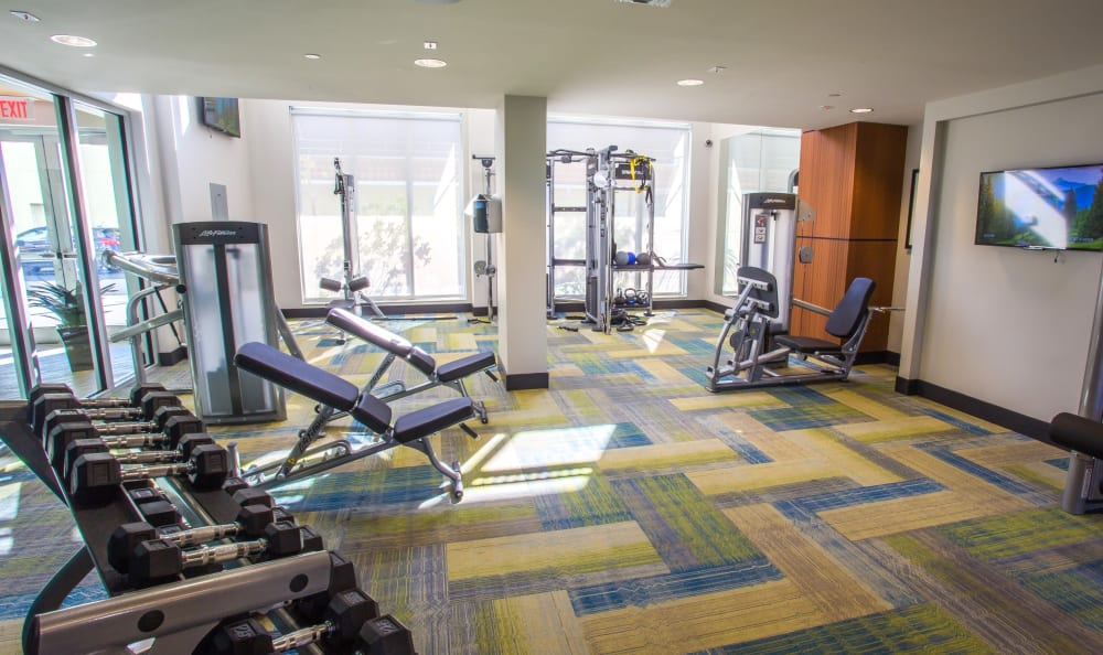 Well-equipped fitness center at Loftin Place Apartments in West Palm Beach, Florida