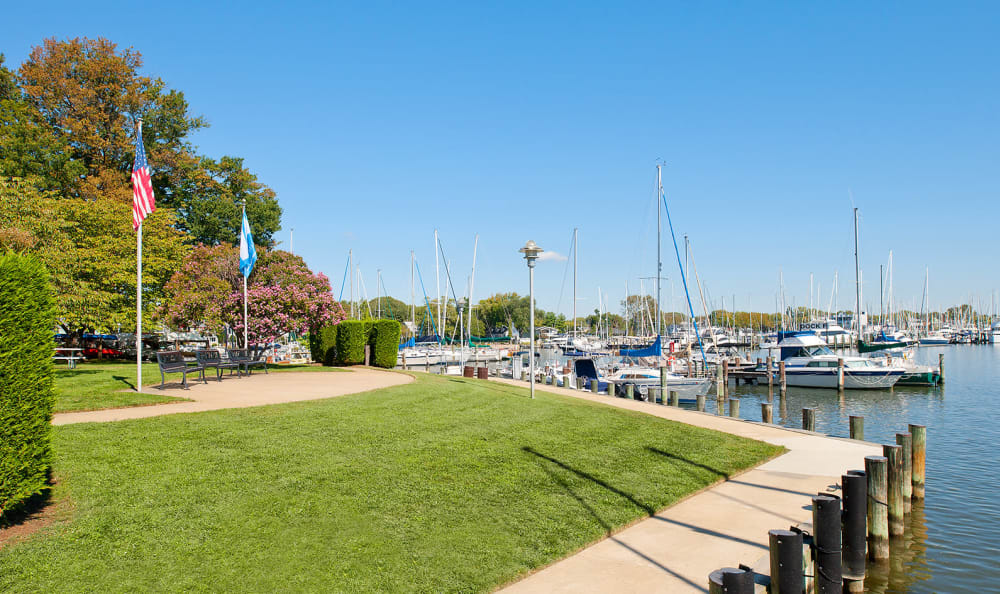Beautifully maintained grass at the water's edge at Watergate Pointe in Annapolis, Maryland