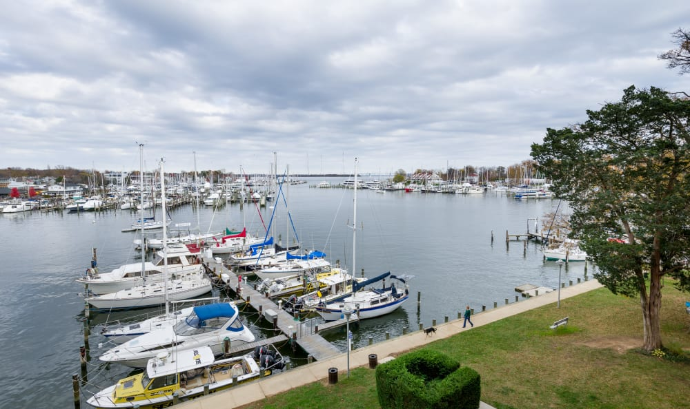 View of the harbor outside Watergate Pointe in Annapolis, Maryland