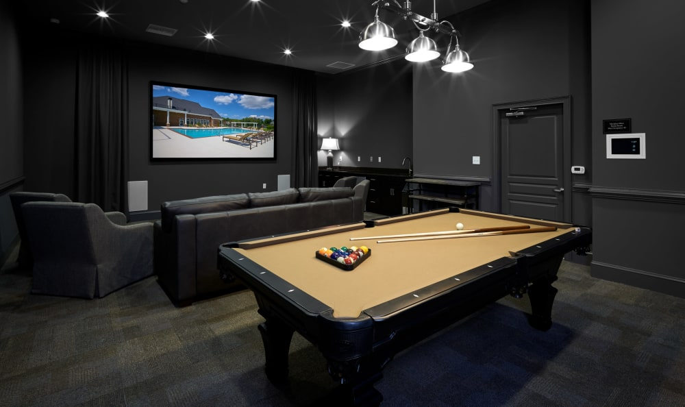 Theater room with a billiard table at Meridian Obici in Suffolk, Virginia