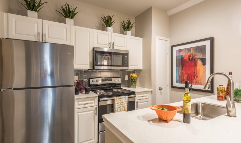 Beautiful kitchen with stainless-steel appliances at Sage at 1825 Apartments in Pflugerville, Texas