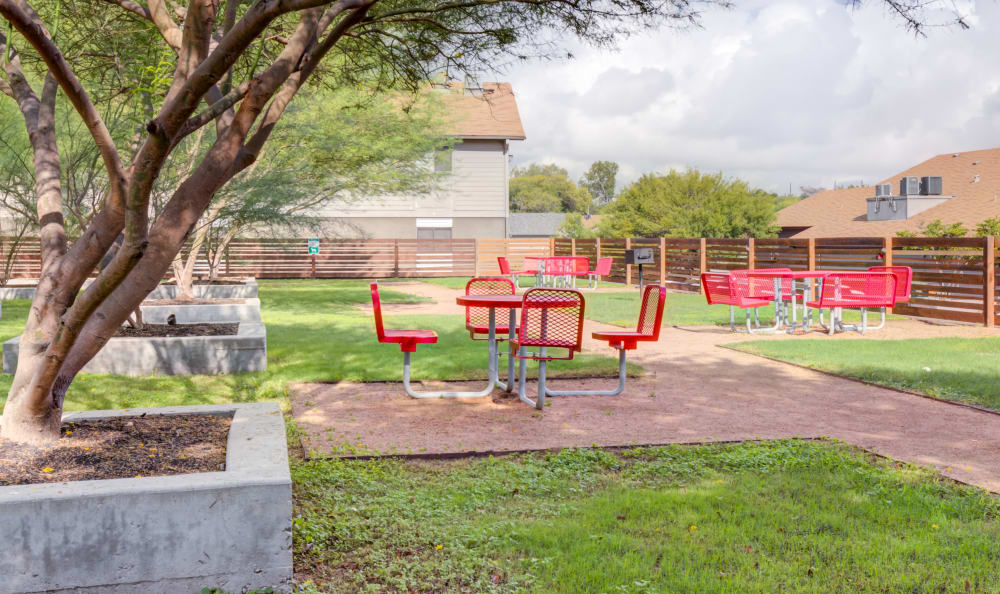 Outdoor picnic area at Array Apartments in Austin, Texas
