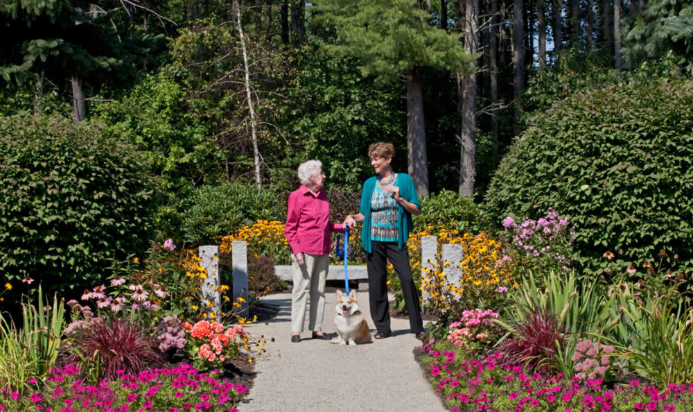 Resident walking her dog at Windham Terrace in Windham, New Hampshire