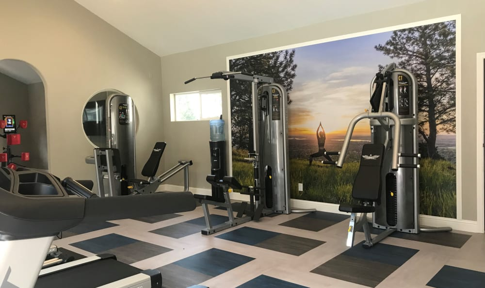 newly renovated fitness center with cardio and weight equipment