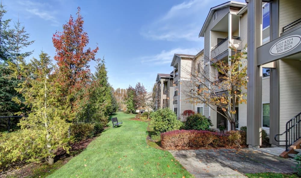 Lush flora outside resident buildings at River Trail Apartments in Puyallup, Washington