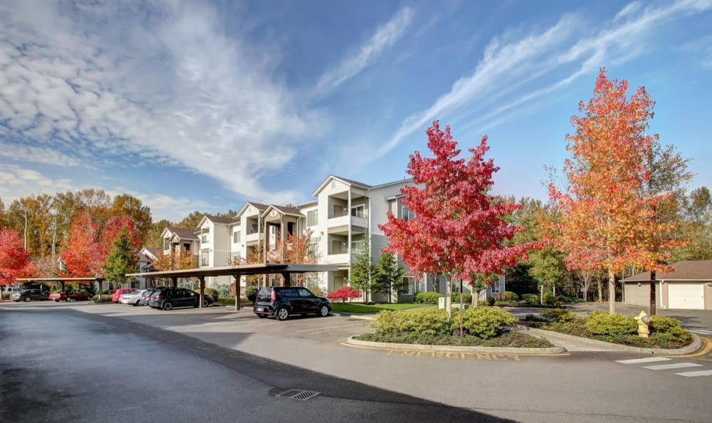 Plenty of parking available outside resident buildings at River Trail Apartments in Puyallup, Washington
