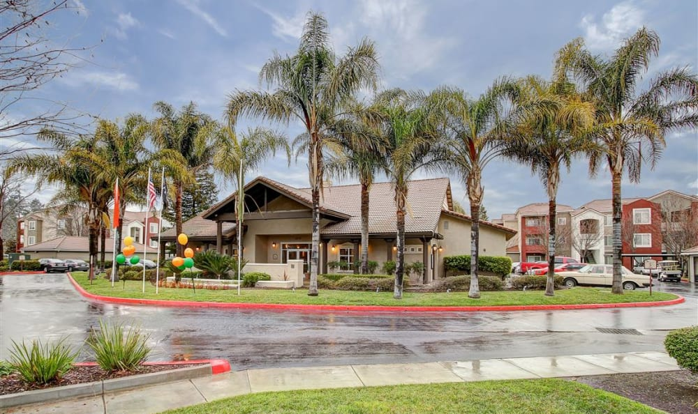 Palm trees and plenty of parking outside the leasing center at Eaglewood Apartments in Woodland, California
