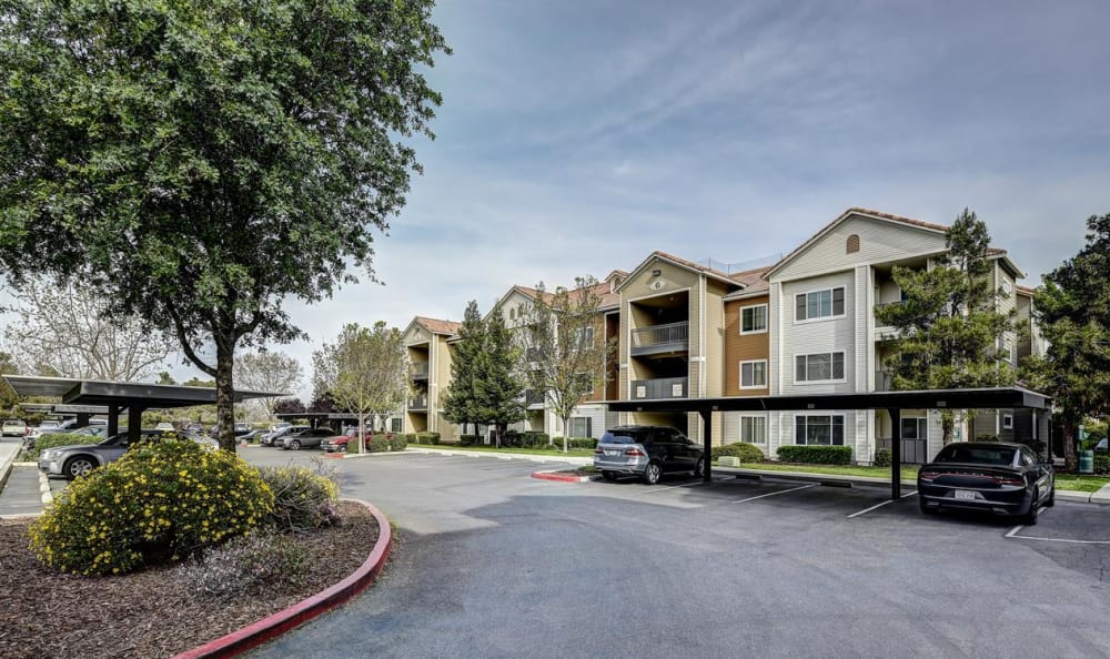 Covered parking and clean landscaping at Sierra Oaks Apartments in Turlock, California