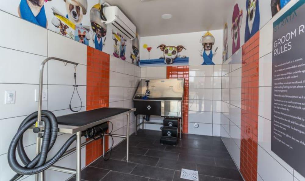 pet wash room at Strata Apartments in Denver, Colorado