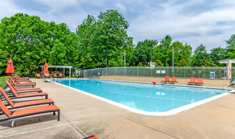 Lounge seating and mature trees near the pool at Watergate Pointe in Annapolis, Maryland