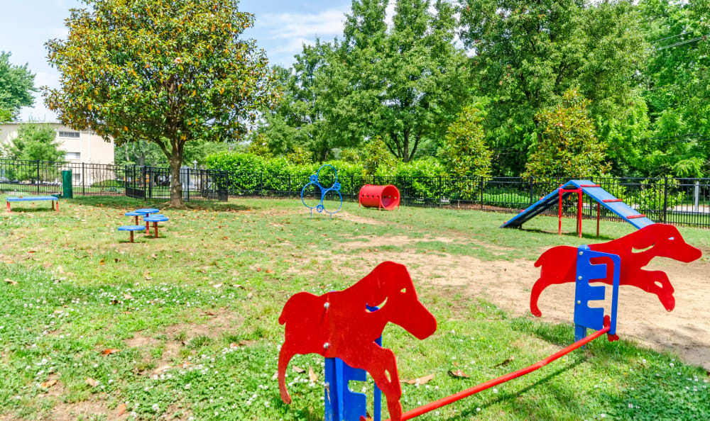 Resident dog park at Watergate Pointe in Annapolis, Maryland