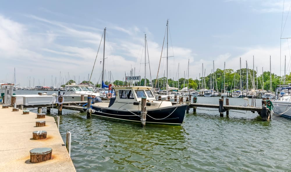 Beautiful views at the water's edge at Watergate Pointe in Annapolis, Maryland