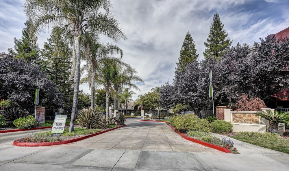 Driveway for Eaglewood Apartments in Woodland, California