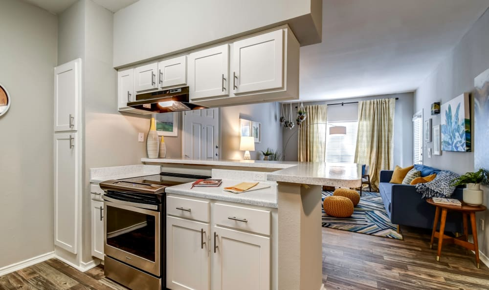 Kitchen perfect for a chef at Azure Apartments in Corpus Christi, Texas