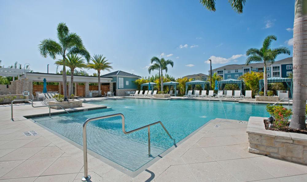 Swimming Pool at Vue at Belleair in Clearwater, Florida