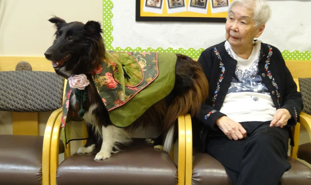 A resident with her pet dog at Nikkei Manor in Seattle, Washington
