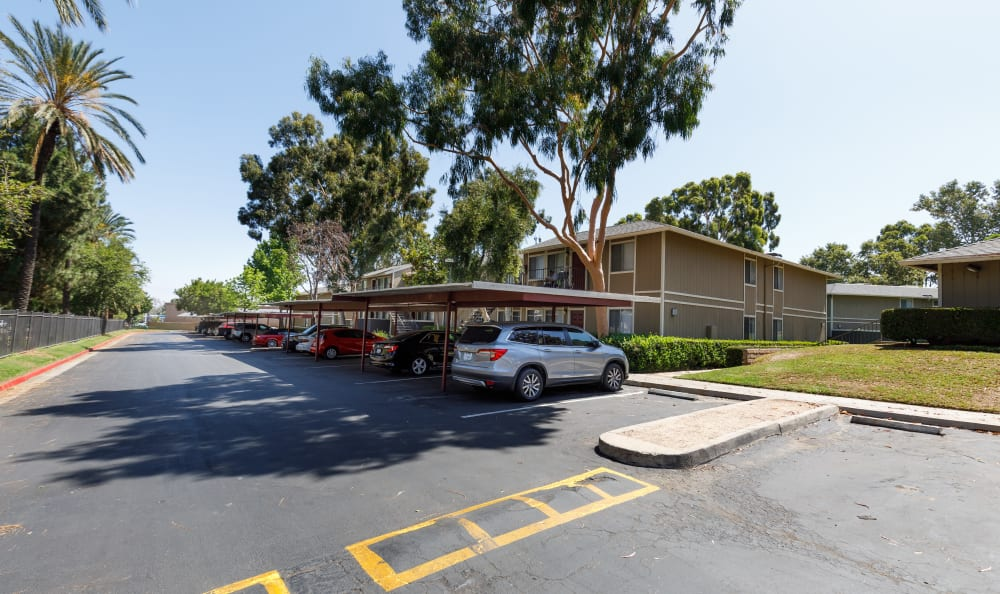 Parking lot area with mature trees at Country Hills Apartment Homes in Corona, CA