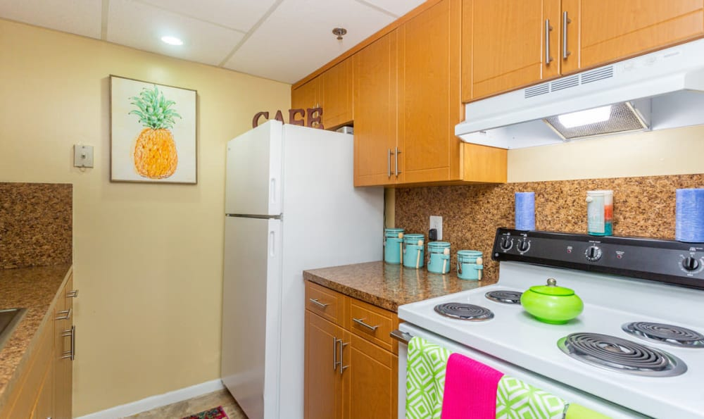 Kitchen Area at Forest Place Apartments in Miami