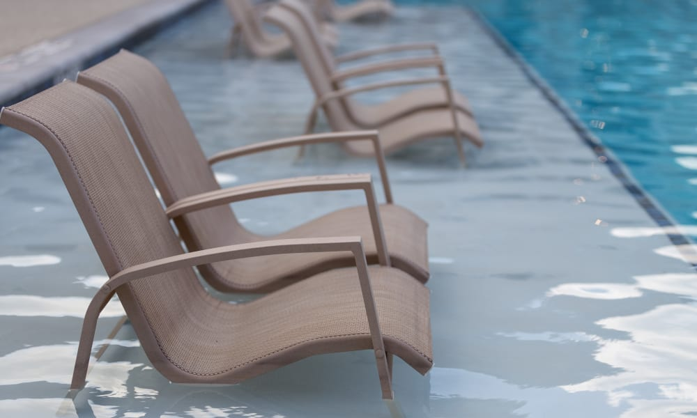 Pool lounge chairs at Encore 281