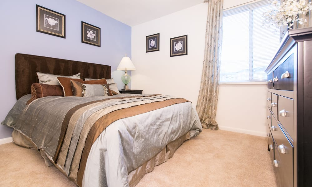 Our apartments in Parkville, Maryland showcase a spacious bedroom