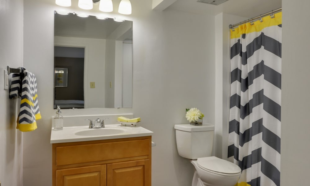 The Colony at Towson Apartments & Townhomes offers a bathroom in Towson, Maryland